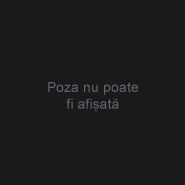 BogdanMaria